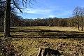 Kleine Dorotheerwiese Lainzer Tiergarten.JPG