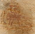 Kohaito, grotta di adi alauti con pitture rupestri databili al 2500 ac ca. 46 cavaliere.JPG