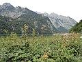 Konigssee - panoramio.jpg