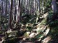 Kumano Kodo Dainichigoe World heritage34.JPG