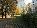 Kyiv Yunist Park6.JPG