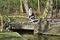 L'un des petits ponts rustiques au dessus de l'eau (25726158303).jpg