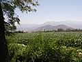 La Gonzalina. - panoramio - R.A.T.P. (9).jpg