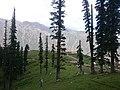 Lalazar view North Pakistan.jpg