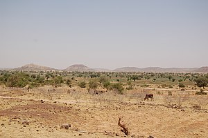 Diffa Region - Landscape of rural Diffa Region, Niger, traveling on the main highway from Diffa to Niamey. (2006)