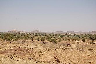 Diffa Region - Landscape of rural Diffa Region, Niger, traveling on the main highway from Diffa to Niamey. (2006)