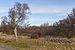 Landsort February 2014 32.jpg