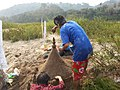 Laos-10-106 (8685831753).jpg