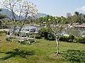 LaosVangVieng036 (47392263101).jpg