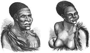 Last of the Tasmanians Woodcut 2 and 3 - Tasmanians.jpg