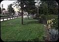 Lawn, road, plants, and a sprinkler to keep it all green (5167648117).jpg