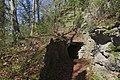 Leitenwälder der Isar 0636.jpg