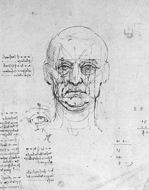 Leonardo da vinci, Study on the proportions of head and eyes.jpg