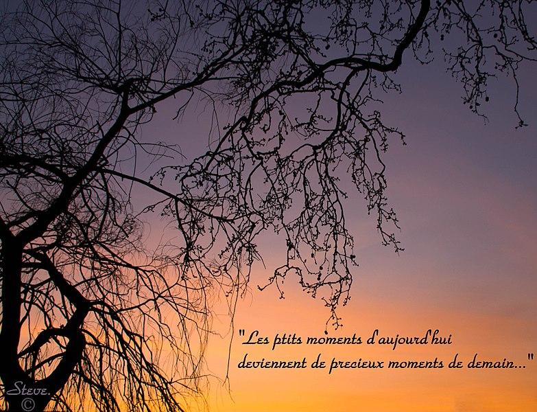Les ptits moments d'aujourd'hui deviennent de precieux moments de demain ...a mediter;)