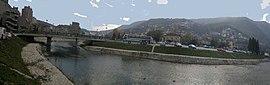 Лева обала Четинье - Panoramio.jpg
