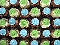 Lime and Blue Baby Shower Mini Cupcakes (3423502123).jpg