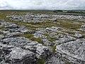 Limestone pavement on Orton Moor - geograph.org.uk - 541371.jpg