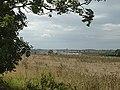 Lincolnshire landscape near Kirton - geograph.org.uk - 544992.jpg