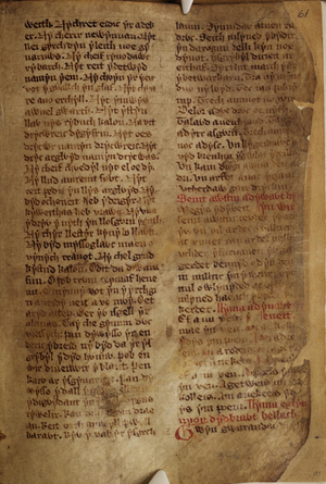 White Book of Rhydderch - White Book of Rhydderch f.61.r