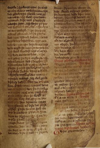 White Book of Rhydderch - White Book of Rhydderch f.61.r