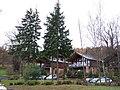 Lodges at Cameron House, Loch Lomond - geograph.org.uk - 1598543.jpg
