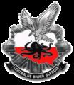 Logo Centralnego Biura Śledczego.png
