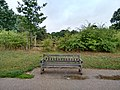 Long shot of the bench (OpenBenches 8289-1).jpg