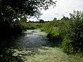 Longham, pool - geograph.org.uk - 1422130.jpg