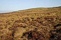 Looking towards Green Craig - geograph.org.uk - 1216435.jpg