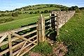 Looking towards Wavering Down - geograph.org.uk - 288639.jpg