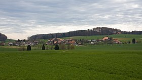 Landschaft in Lüterswil