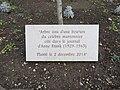 Lyon 3e - Plaque Anne Frank place Marc-Aron (janv 2019).jpg