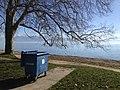 Mülltonne am Genfer See .jpg