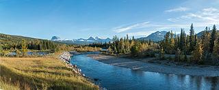 Belly River river in Canada
