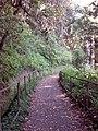 Madeira, Portugal - panoramio (3).jpg