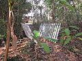Magnolia Lane Plantation Bridge 1.JPG