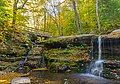 Man with dog taking pictures at Diamond Notch Falls in autumn.jpg