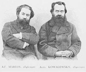 Alexander Kovalevsky - Antoine Fortuné Marion and Alexander Kovalevsky, founder and collaborator of the Annals of Natural History Museum of Marseille