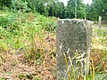 Marker Stone, Church Plantation - geograph.org.uk - 78759.jpg