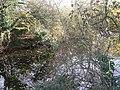 Marl pond - geograph.org.uk - 1167859.jpg