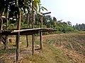 Mawlaik, Myanmar (Burma) - panoramio (12).jpg