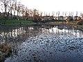 Maxwell Park Pond - geograph.org.uk - 114588.jpg