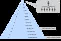 Mechanizm funkcjonowania piramidy finansowej.png