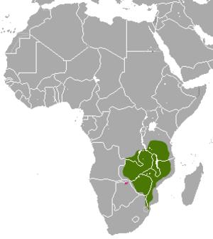 Meller's mongoose - Image: Meller's Mongoose area