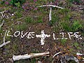Message in bleached white stones, Bisterne Common - geograph.org.uk - 502663.jpg