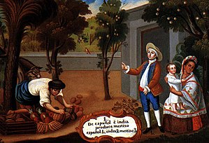 "A representation of a Mestizo, in a ""Pintura de Castas"" during the Spanish colonial period of the Americas. The painting illustrates ""A Spaniard and Amerindian, produce a Mestizo""."