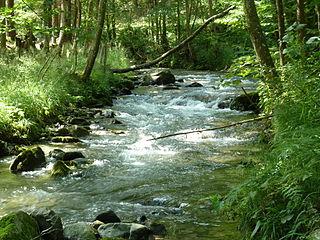 Meža river in Slovenia