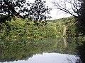 Mezhyrich, Sums'ka oblast, Ukraine, 42230 - panoramio (1).jpg