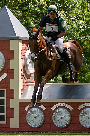 Michael Ryan (equestrian) - Michael Ryan and Ballylynch Adventure competing at the 2012 Olympics