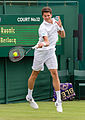 Milos Raonic 4, Wimbledon 2013 - Diliff.jpg